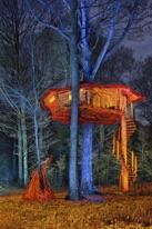 Photographie de forêt avec cabane en bois, de nuit éclairé en lightpainting de Michel Séméniako.