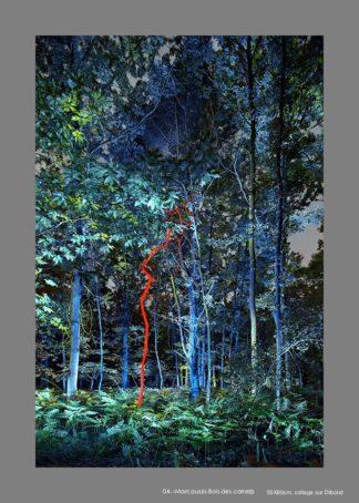 Forpet de nuit éclairé en bleu avec un arbre éclairé en rouge.