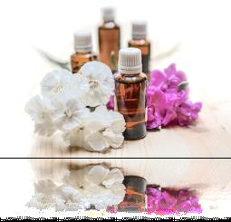 Huile essentiel base de l'atelier créer votre parfum